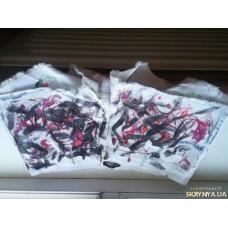 белые шорты с прикольным дизайном